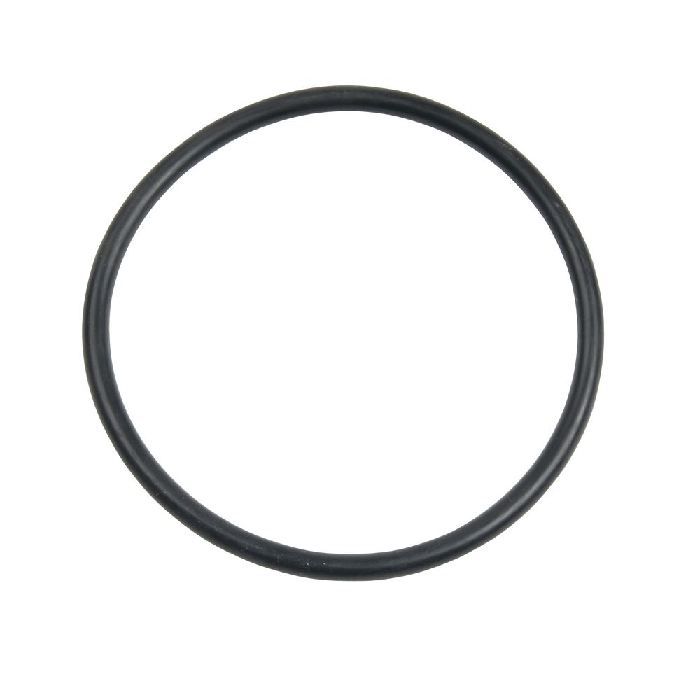 Image for Carlson Pump Rubber O-ring