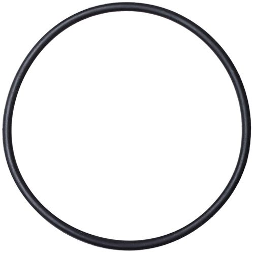 Image for NRS Super 2 Pump Replacement Piston O-Ring